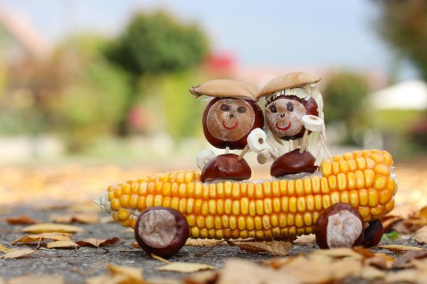 Corn With Acorn Ride
